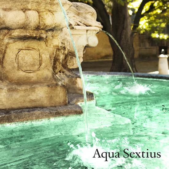 Aqua Sextius - The Companion (20 ml)
