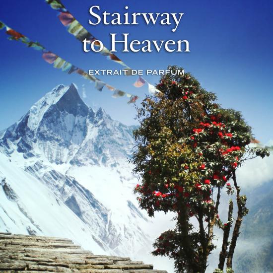 Stairway to Heaven (50 ml)