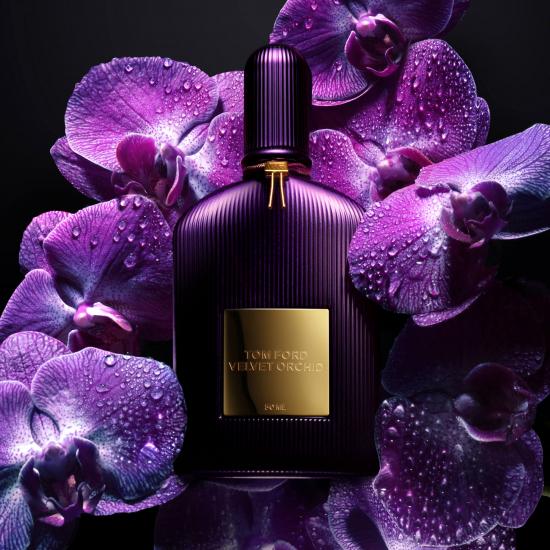 Velvet Orchid (30 ml)