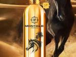Arabians (100 ml)