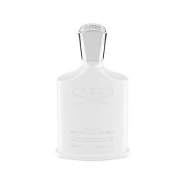 Silver Mountain Water (100 ml)